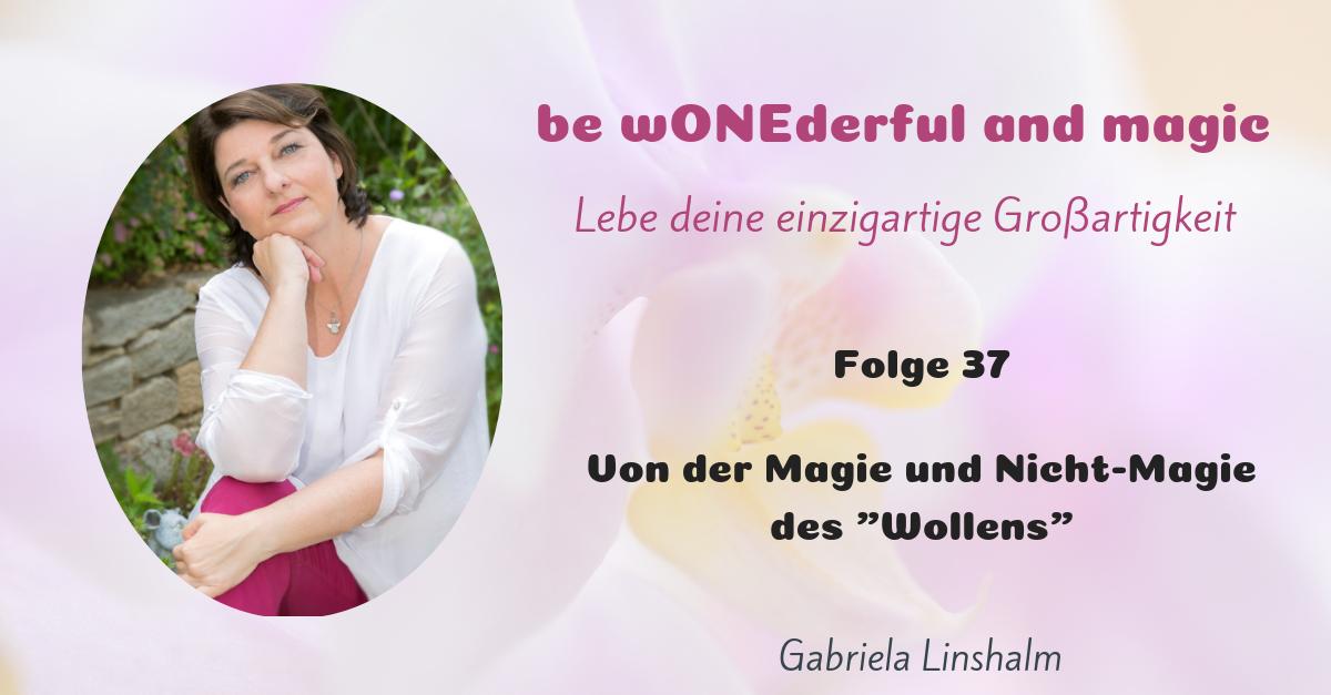 """[37] Von der Magie und Nicht-Magie des """"Wollens"""""""